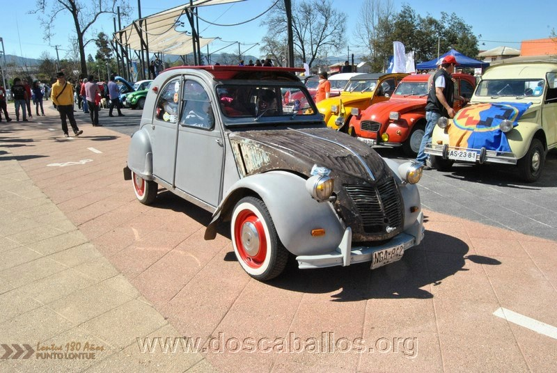 CITRONETAS_RIO_CLARO_020