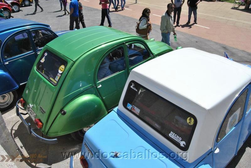 CITRONETAS_RIO_CLARO_086