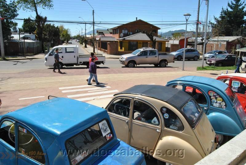 CITRONETAS_RIO_CLARO_089
