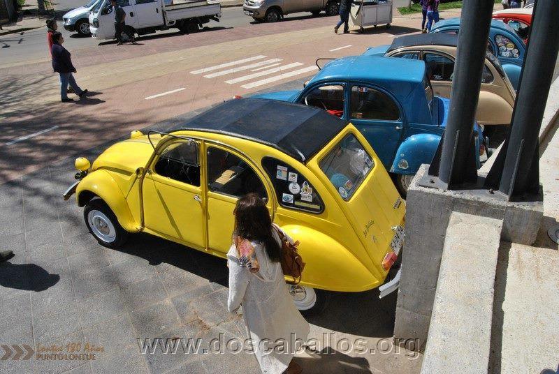 CITRONETAS_RIO_CLARO_123