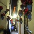 Se celebró el pasado 5-8 de diciembre de 2014. Autor fotos: Juanjo1379